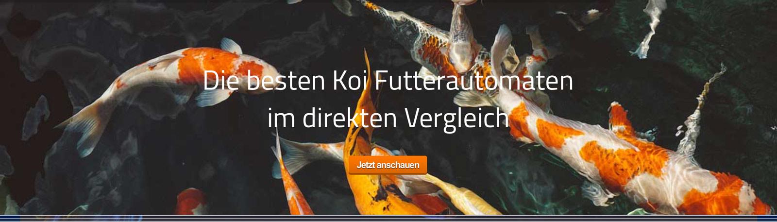 Koi-fuetterautomat-futter-teich